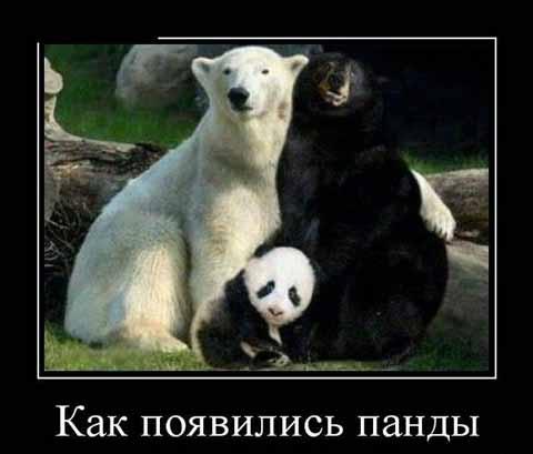 Смешные прикольные картинки с ...: smejsa.ru/smeshnye-prikolnye-kartinki-s-nadpisyami