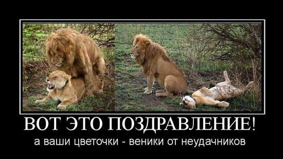 smeshnye_pozdravleniya