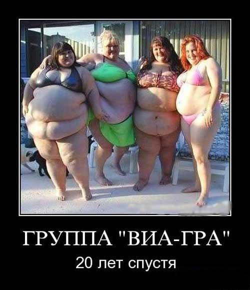 Фото приколы про толстых девушек