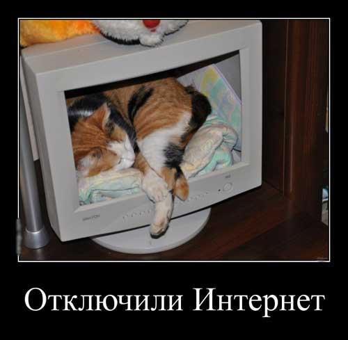 Интернет отключили - демотиваторы