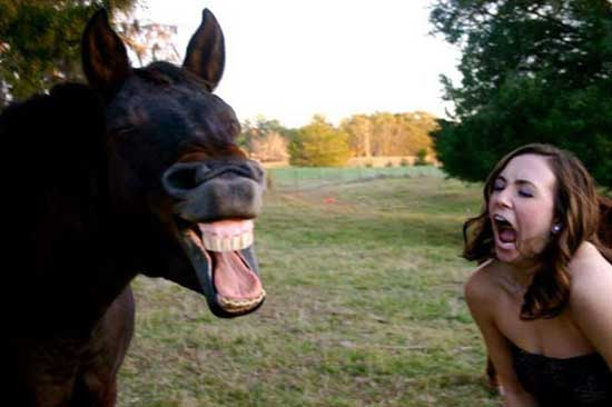 Смешные женские фото