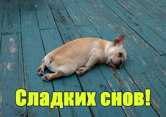 Приятных снов - картинки